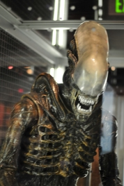 A full-grown Alien