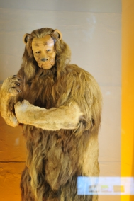 The Cowardly Lion