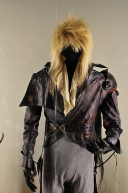 Jareth's Goblin King clothes from Labyrinth