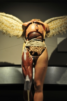 The In Utero Angel