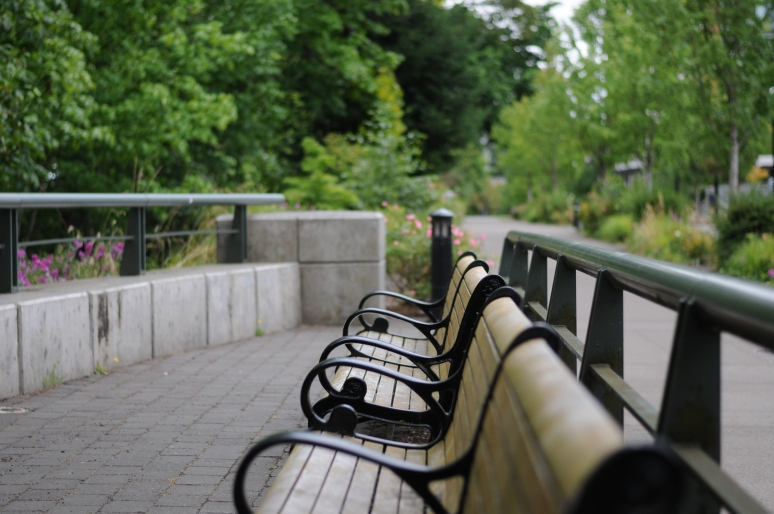 River Side Benches