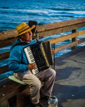 Pier Accordion Player