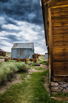 A look down one of the overgrown side paths in Bodie State Historic Park, CA.