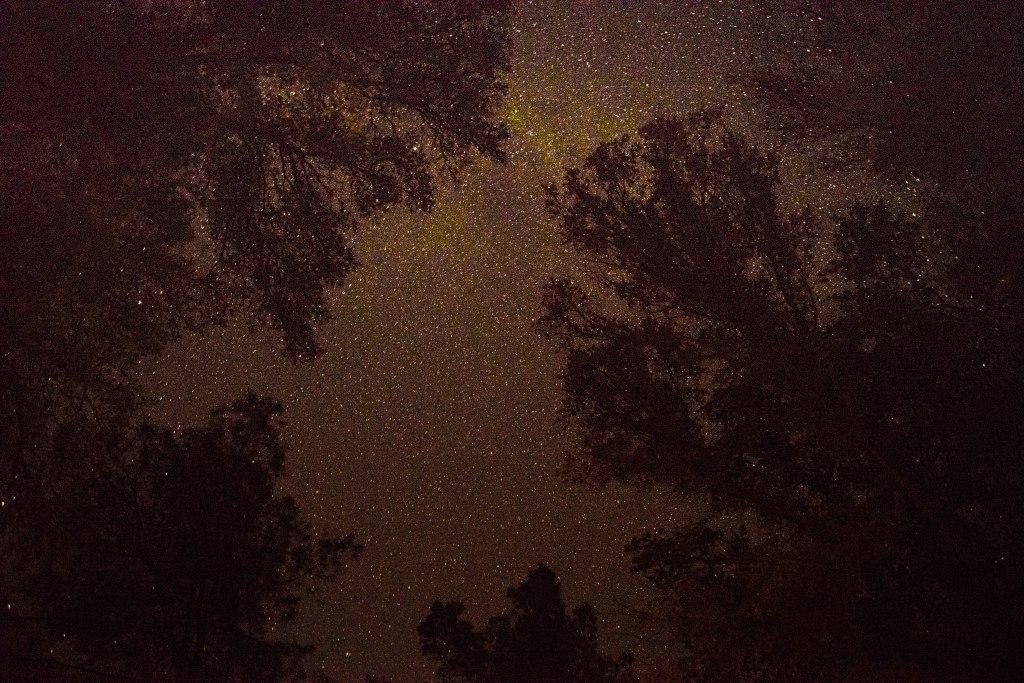 night sky Mariposa CA
