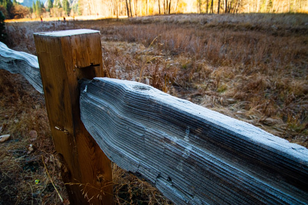 Frosted wood fence