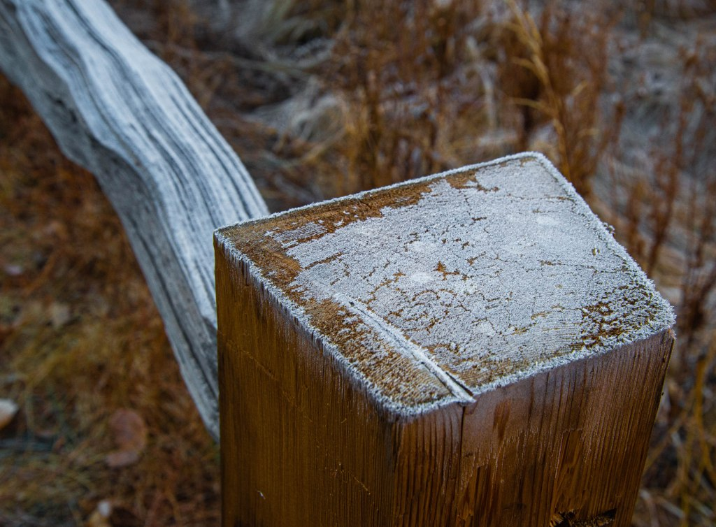Frost Fence Post